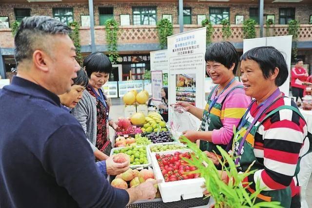丰富多彩的田园展览和月度消费扶贫活动启动