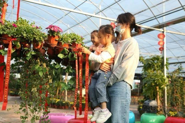 2020安徽蒙城国庆休闲文化旅游节来了,精彩不容错过!