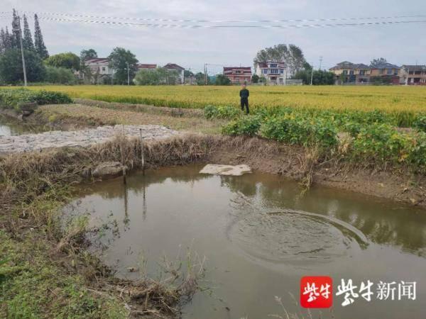 火狐体育官网:菜花蛇被困渔网 警方解救并释放