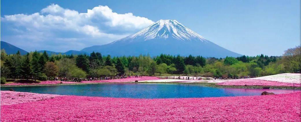 日本商务及留学等签证开始受理