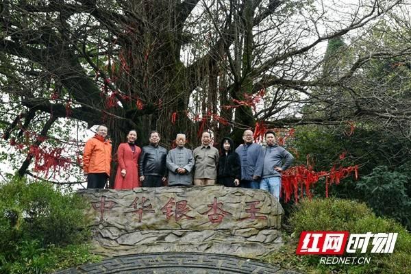 全国艺术名家齐聚湖南新化 开启天下梅山采风之旅