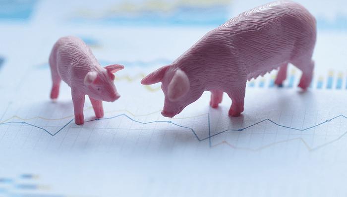 养猪有多赚?这家公司给股东现金分红22亿元