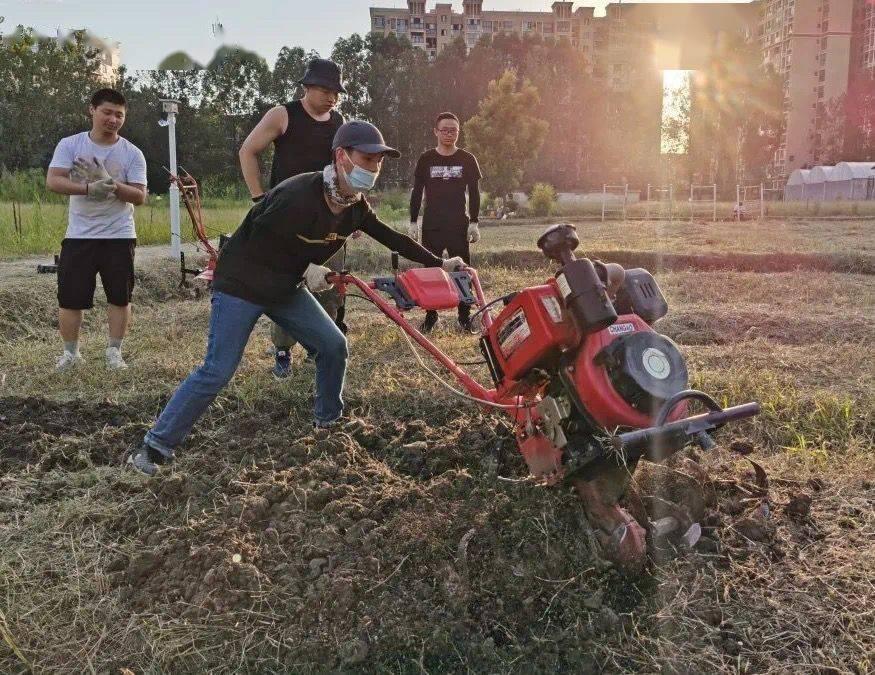 把农场搬到校园,四川大学锦城学院开设劳动教育必修课