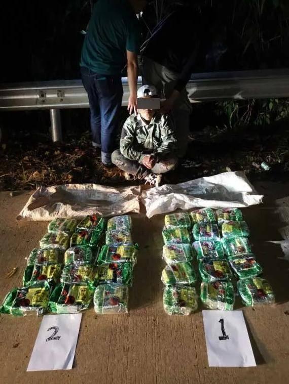 31.66公斤毒品藏匿树丛!云南警方成功破获