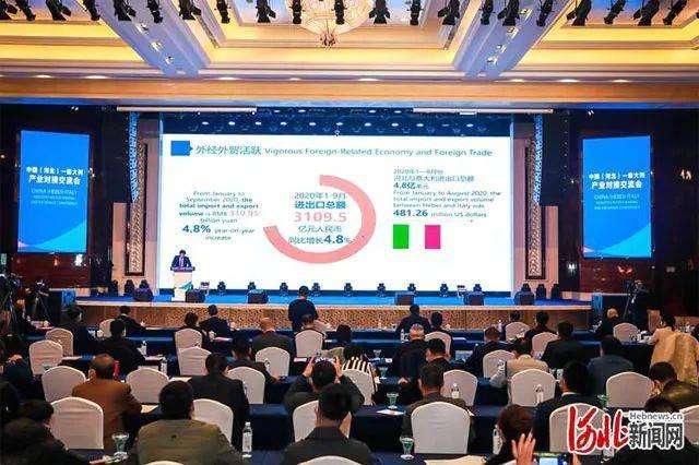 中国(河北)-意大利产业对接交流会在乐城举行