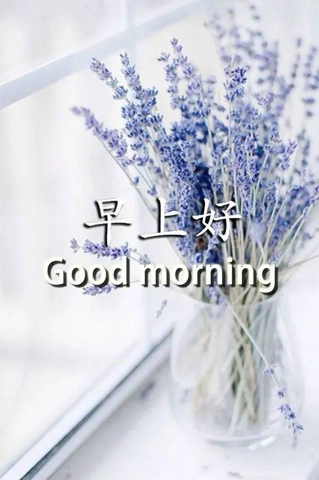 周六早安问候语简短一句话  2021大年初十四早上好图片