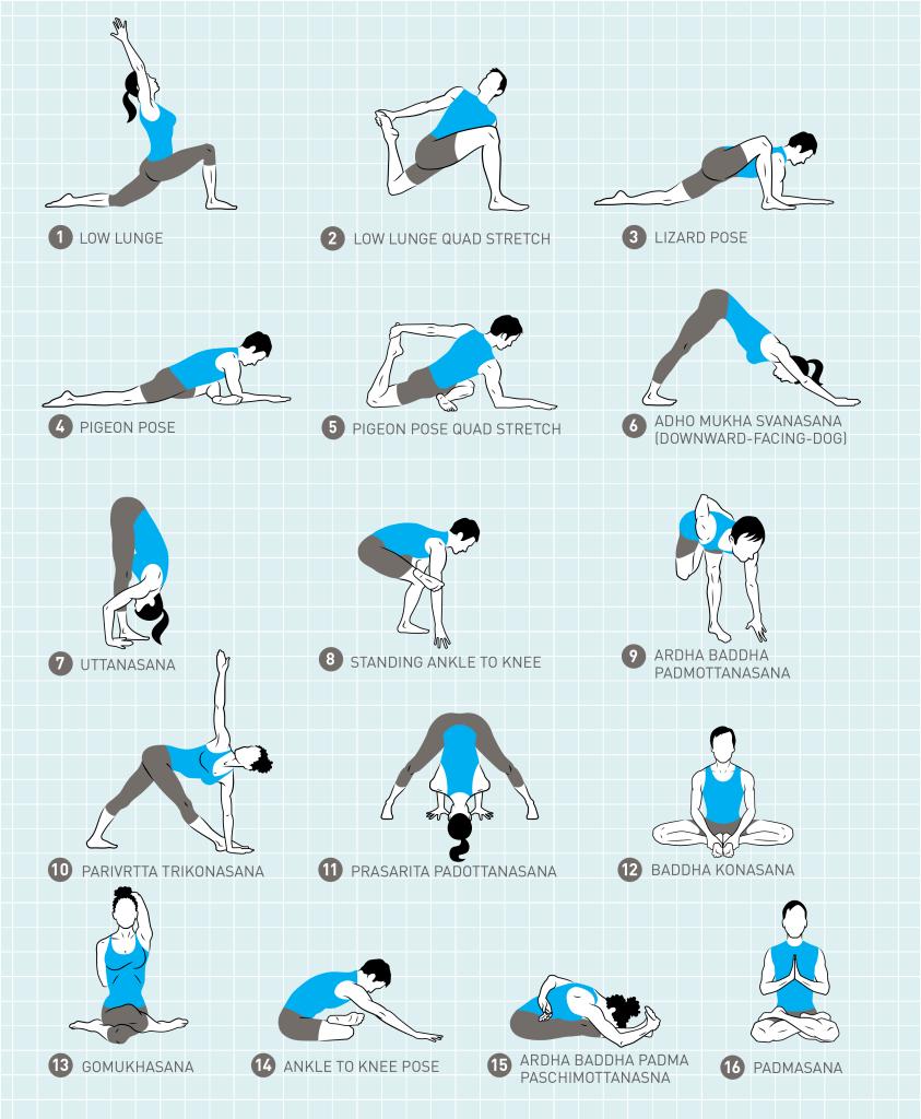 20幅收藏级瑜伽挂图,揭开瑜伽老师备课的秘密…