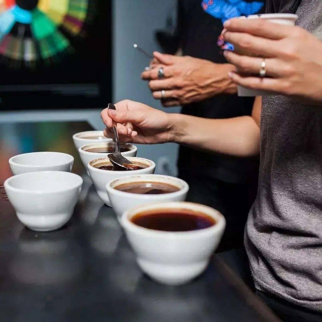 咖啡的余韵是属于味觉还是嗅觉? 试用和测评 第3张