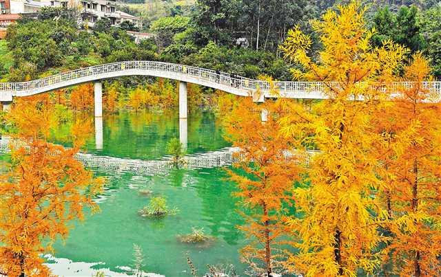 """臭水沟变风景区三峡移民村吃上""""旅游饭"""""""