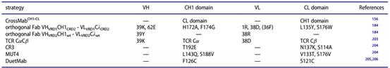 双特异性抗体分子构建