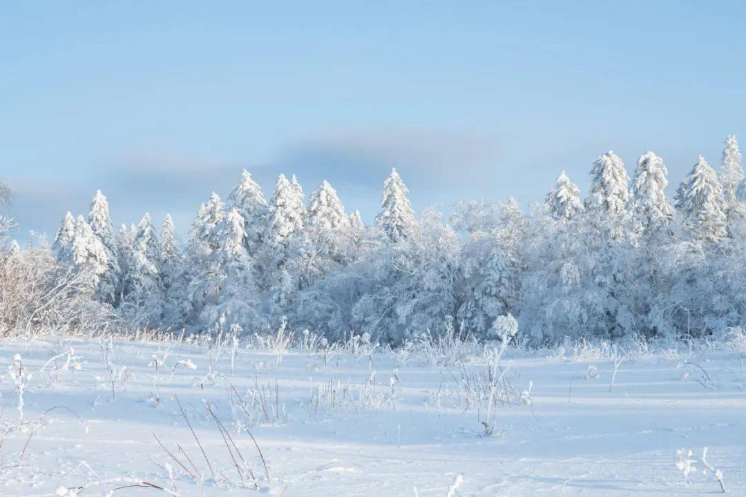 【今日小寒】寒气正深处,情意正浓时。