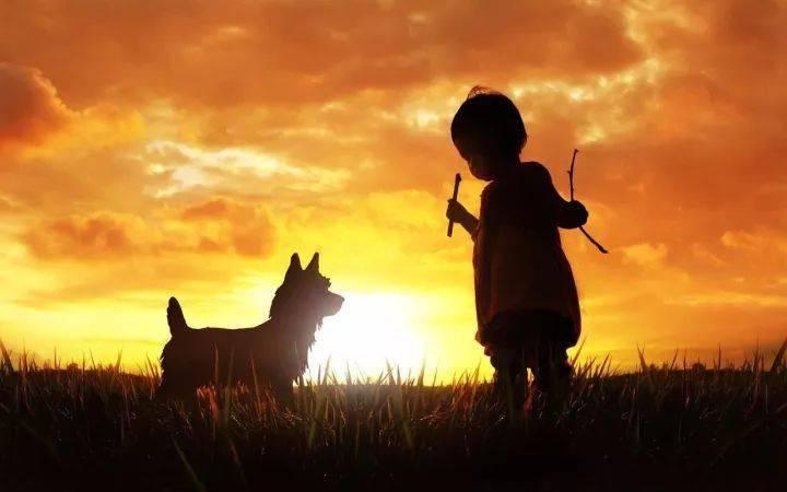 班得瑞《童年》,触动心灵的一首轻音乐!