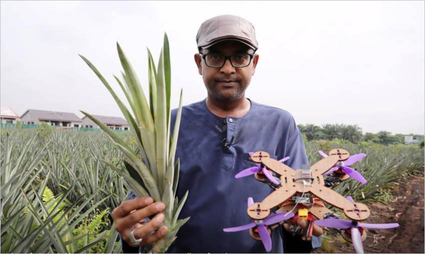 马来西亚一研究小组用菠萝叶来打造无人机框架  第2张