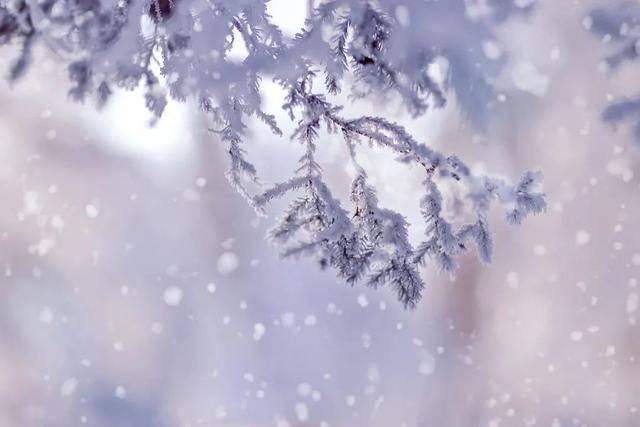 冷҉冷҉冷҉冷!四大预警高挂,今天全天零度以下