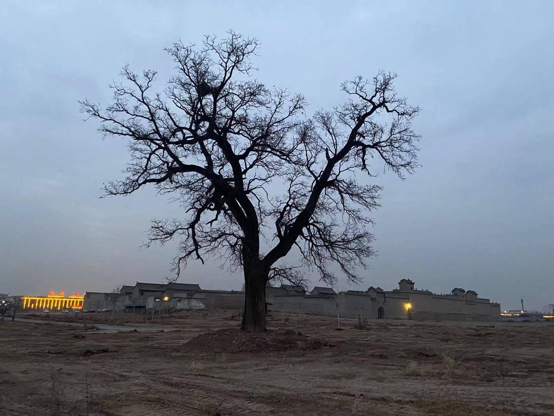 乔家大院所在地村主任被判无期,多项犯罪事实与拆迁安置相关