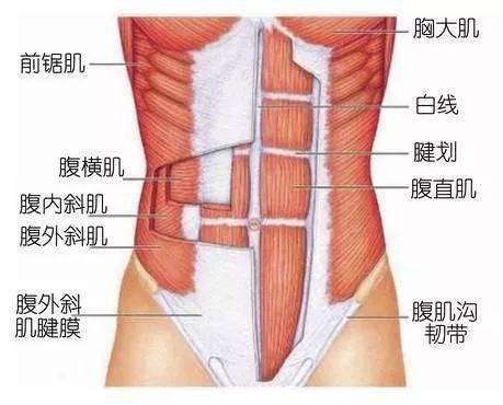 跑步腿酸是肯定会的,可是为什么会腰酸呢?