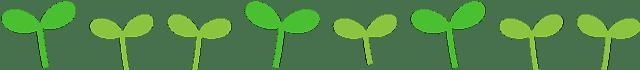 石狮市实中附小后勤服务管理:2020年秋季学校绿色营养自助餐厅第二十周食谱