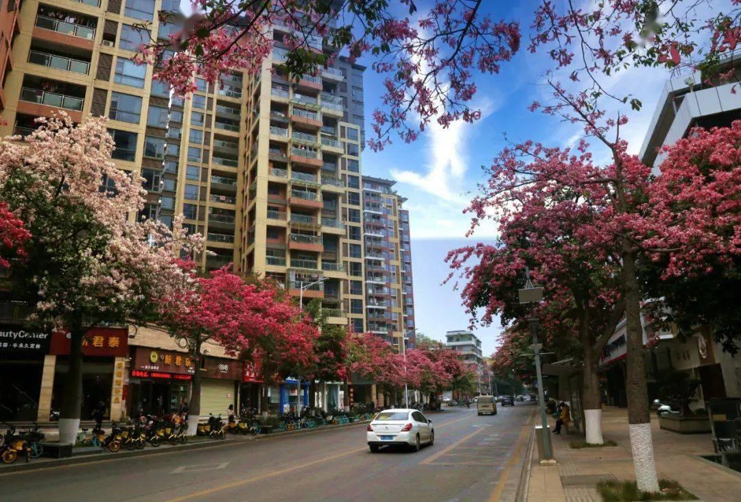 蓝蓝的天上白云飘!韶关市区空气六项指标综合指数全省排名第五!