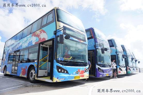 """守护""""秀水青山""""比亚迪纯电动公交车驶入千岛湖_绿色"""