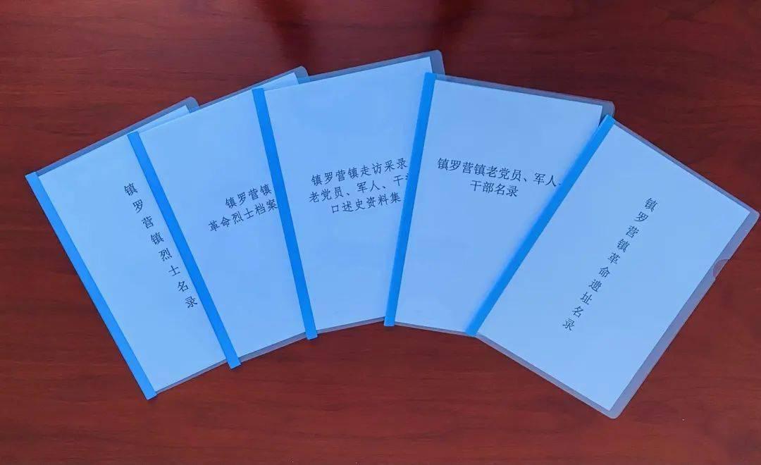 """【献礼党的百年华诞】镇罗营镇""""六个一""""活动开启红色新征程"""