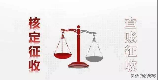 核定征收和查账征收的区别(核定征收查账征收怎么理解)插图(2)