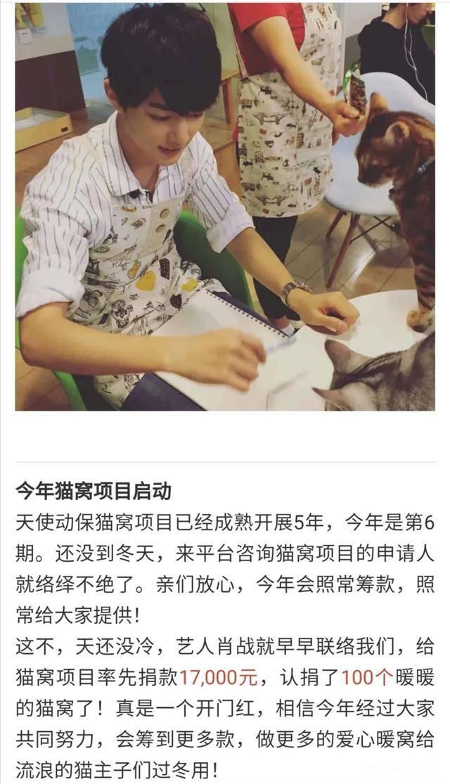 肖战未走红前做公益被扒 月薪3000捐款1万7救助小动物