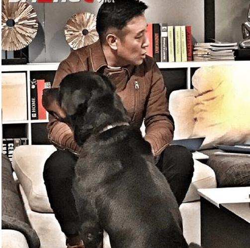 警花与警犬2为什么不播(花与警犬第二季是原班人马回归吗)