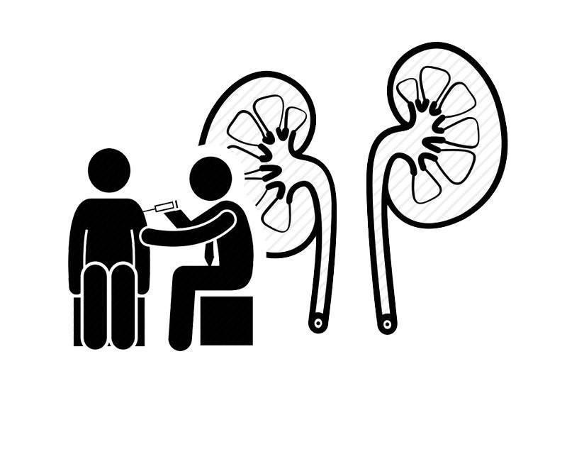 【男性强腰固肾补精气】男人腰酸乏力,肾气不足吃什么?