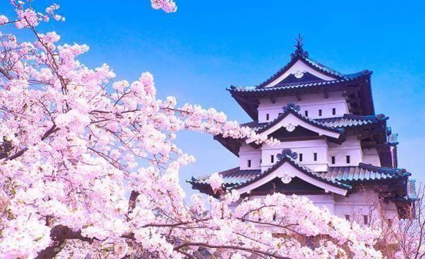 """在日本生活有哪些""""不方便""""之处?听日本媳妇说完,感叹:不容易"""
