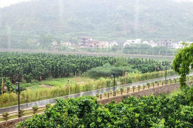 """珠三角最值得自驾游的地方,有""""广东元阳""""之美誉,四五月最美!"""