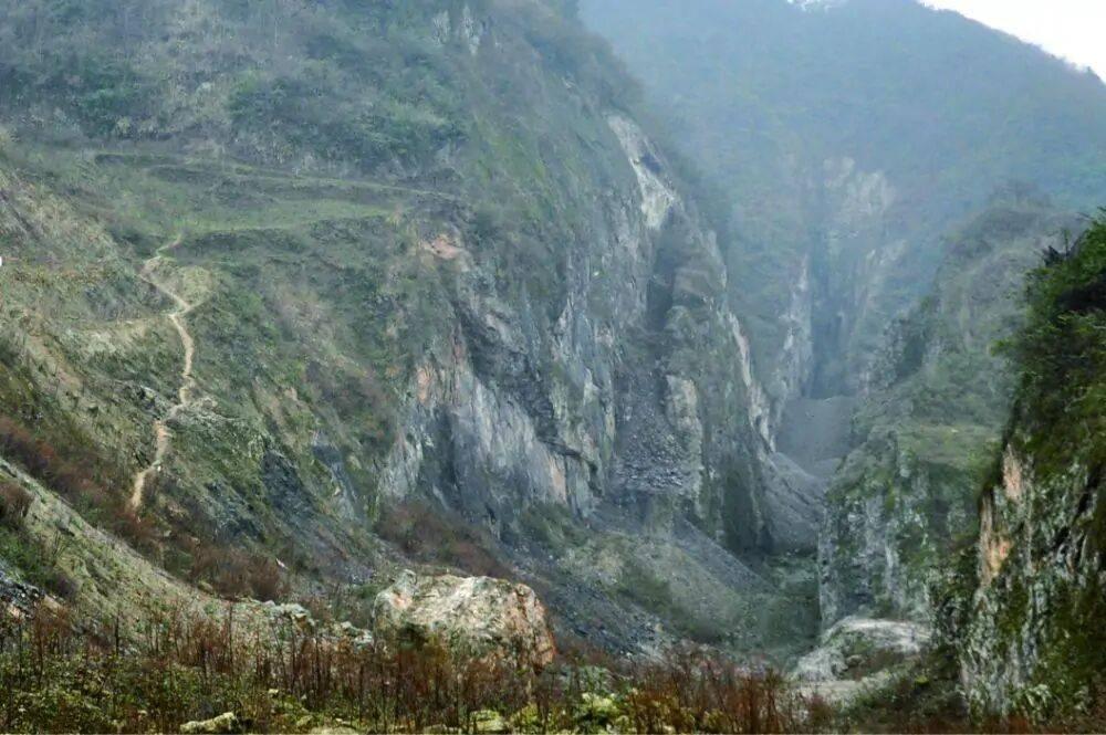 世界最早陆生真菌类化石在我国贵州发现,是蘑菇、酵母的祖先  第3张
