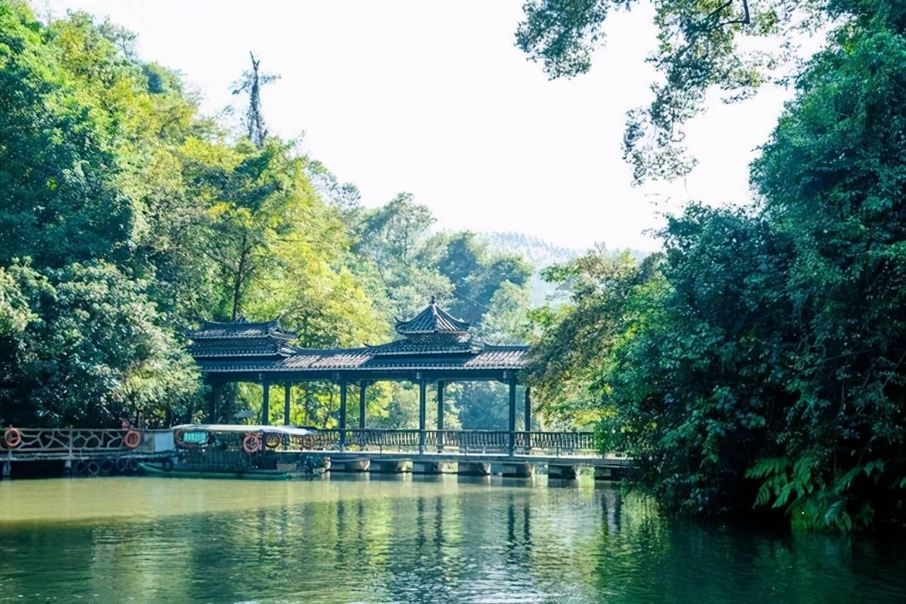 在柳州有处超美的奇幻森林,这里瀑布成群,是清凉一夏的好地方