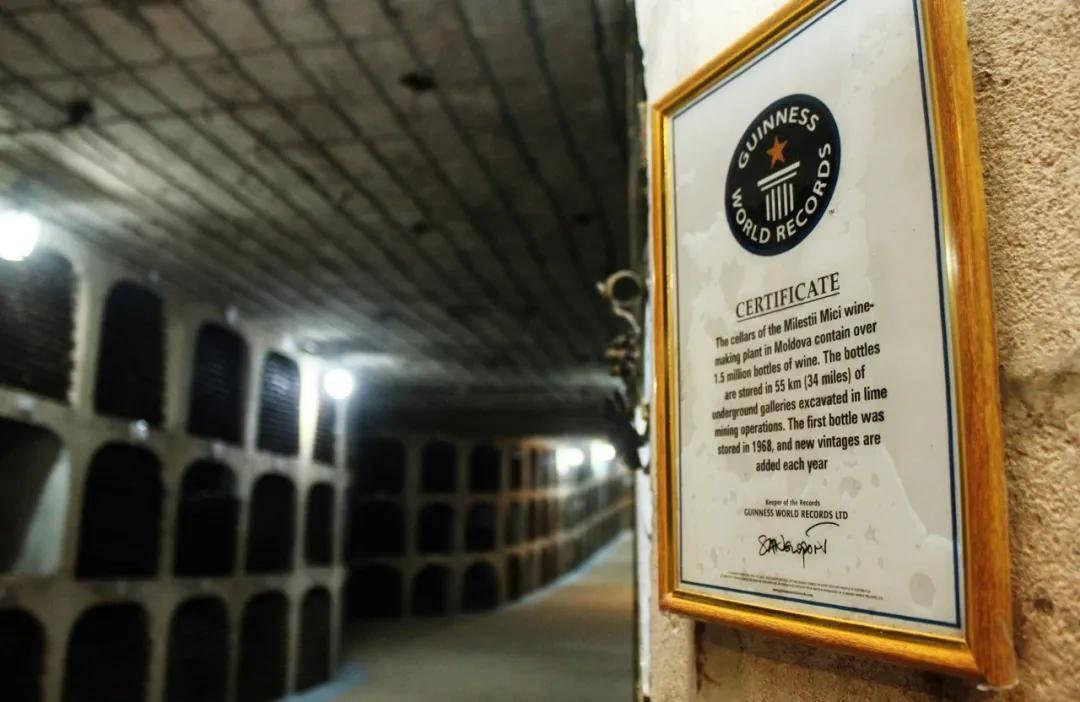 摩国骄傲|米茨酒庄最全介绍之酒窖篇