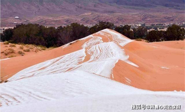 撒哈拉沙漠竟然下雪了!这场景相当于南方孩子见到雪的反应