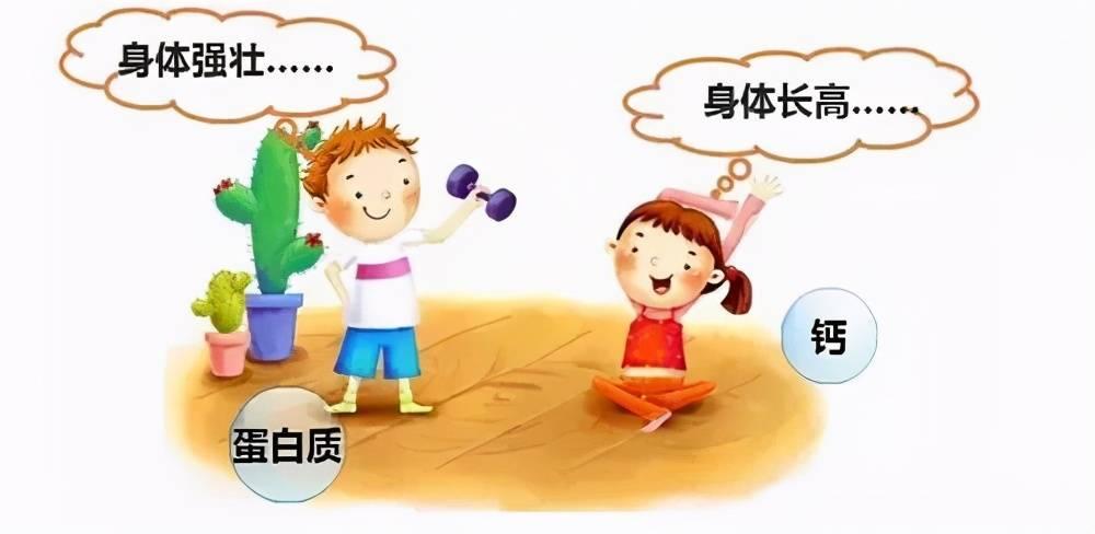 孩子补充蛋白质容易长高?如何给孩子补充蛋白质,宝妈要知道