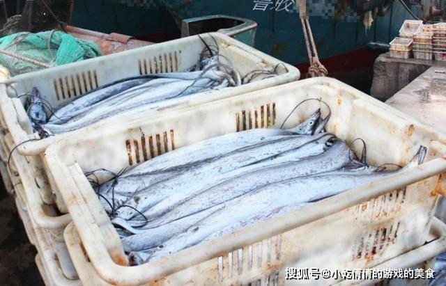 买鱼时,寄望这5种,不能养 殖,都是纯野生的,味道鲜美定心吃