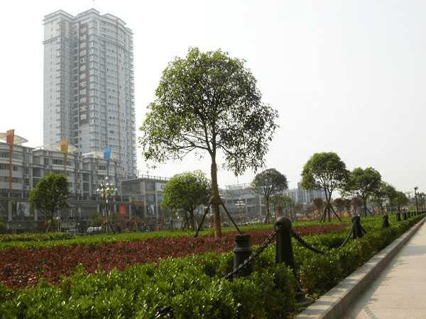 荆州市gdp_荆州市发布2020年国民经济和社会发展统计公报