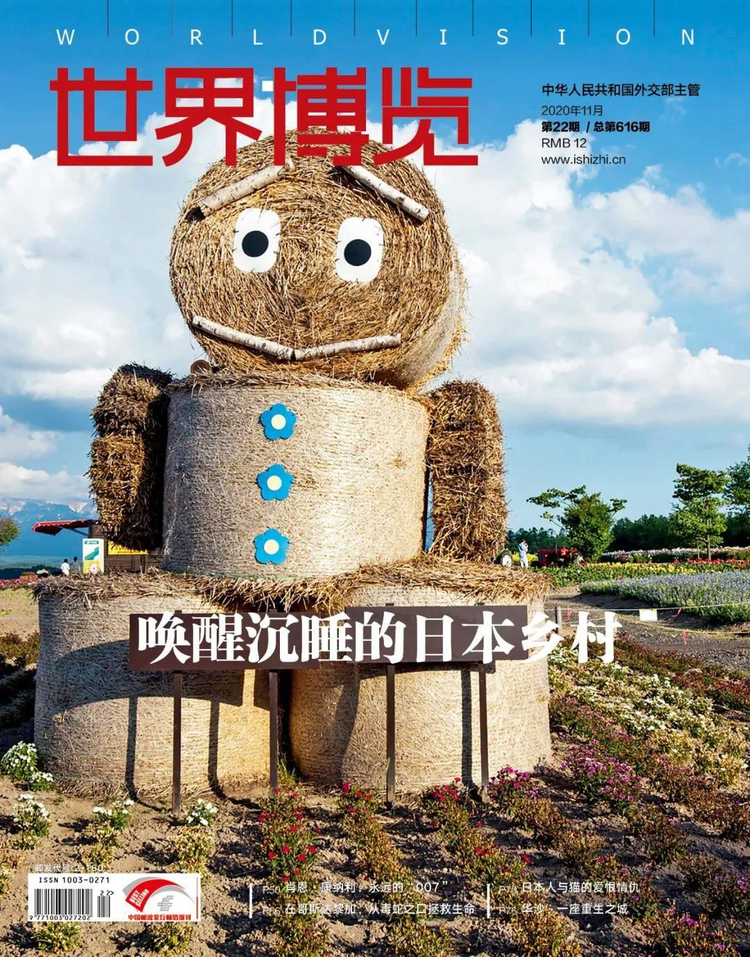 日本新潟,成功用艺术实现了乡村复兴梦