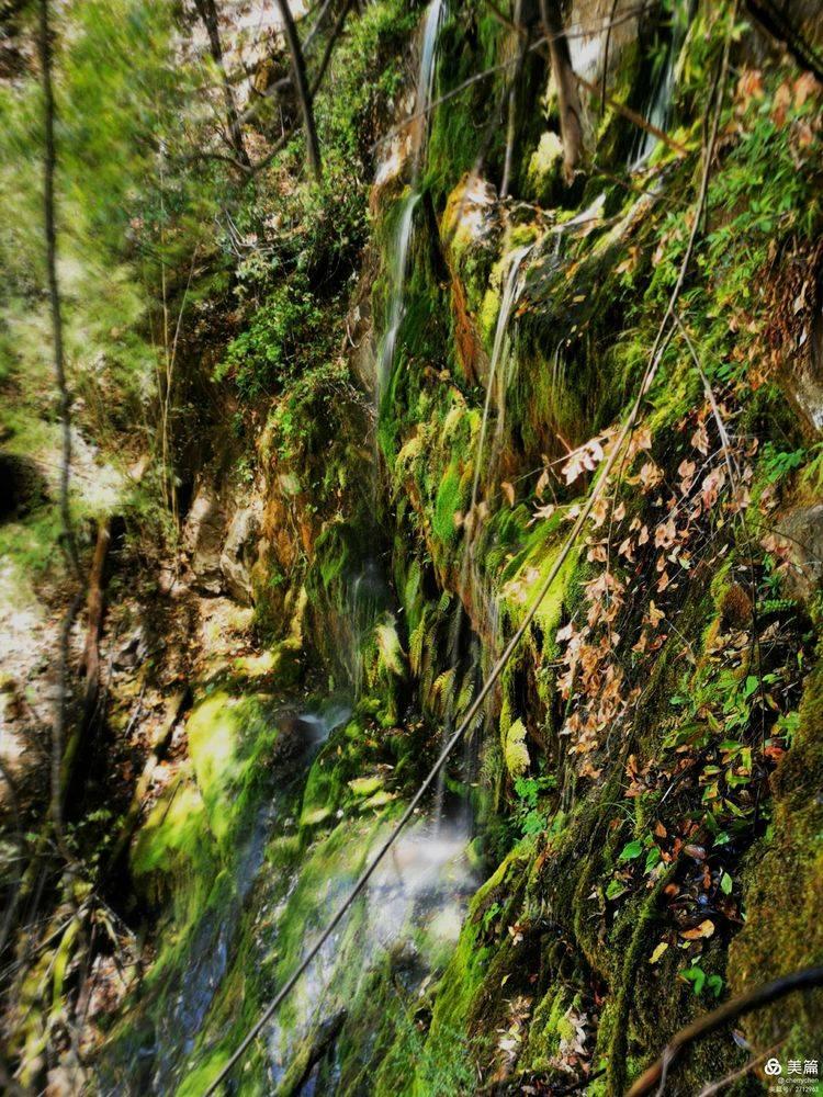 徒步丽江巴拉神山 第三天:牦牛坪大本营-普拉顶-龙口瀑布-茶马古道仁和傈僳村