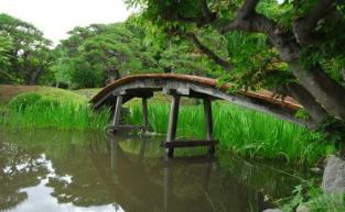 心理测试:你会选择走向哪个独木桥?测你这辈子能活多少岁?  第1张