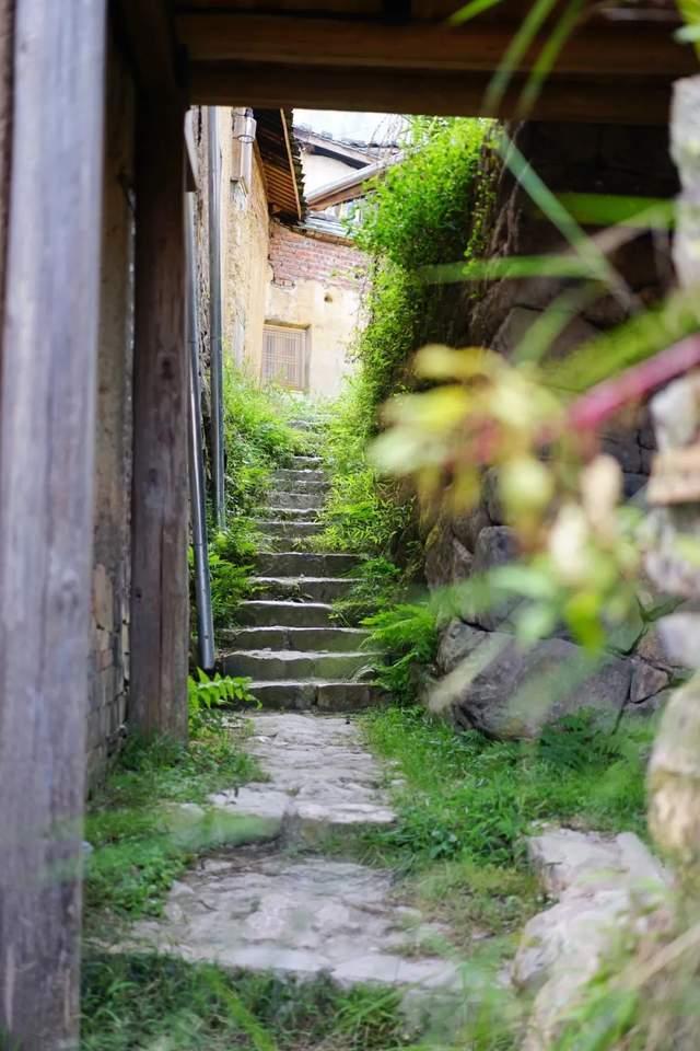 原创             每年3块/平米的租金,谁租谁修缮的新政,让福建古村落迎来了春天
