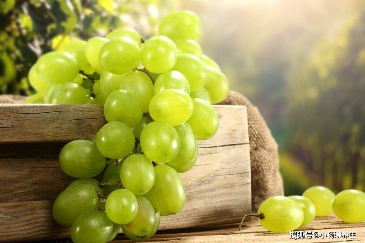 葡萄吃多了对身体有害吗 葡萄一天吃多少颗合适