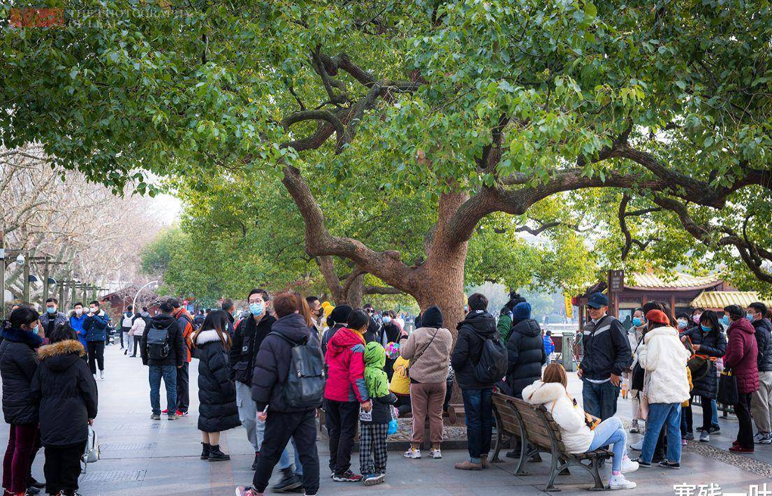 周末杭州西湖游客量剧增,个别地方是人挤人,很多人还不戴口罩