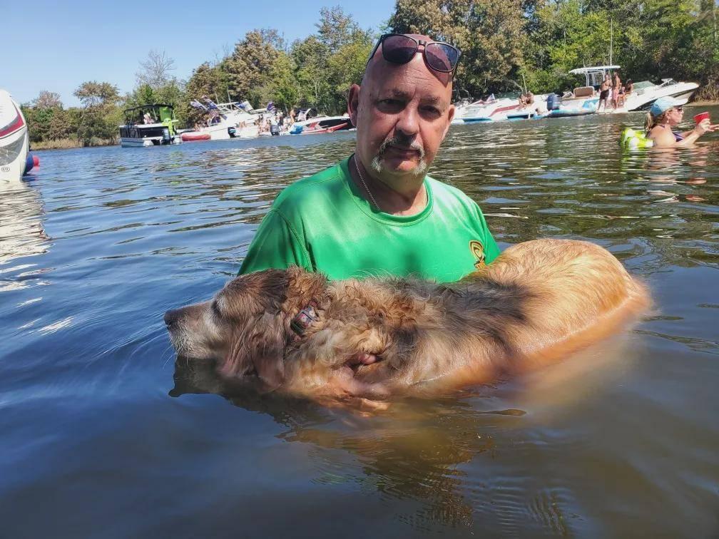 金毛误跑进树林,失踪了16天后,网友发现它却在海湾游泳