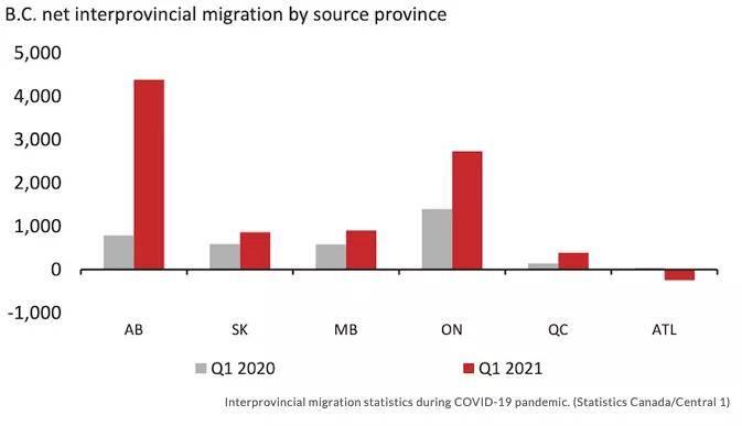 温哥华有多少人口_疫情期间加拿大人居然向温哥华大量迁移