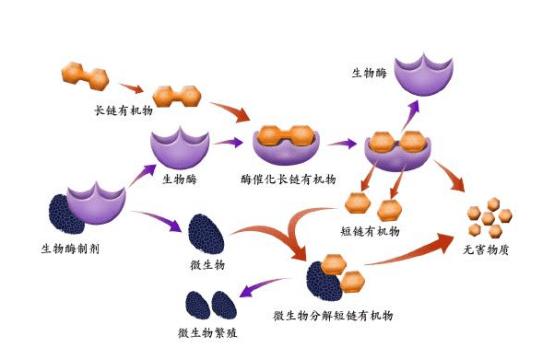 生物酶宠物除臭剂有哪些优势?