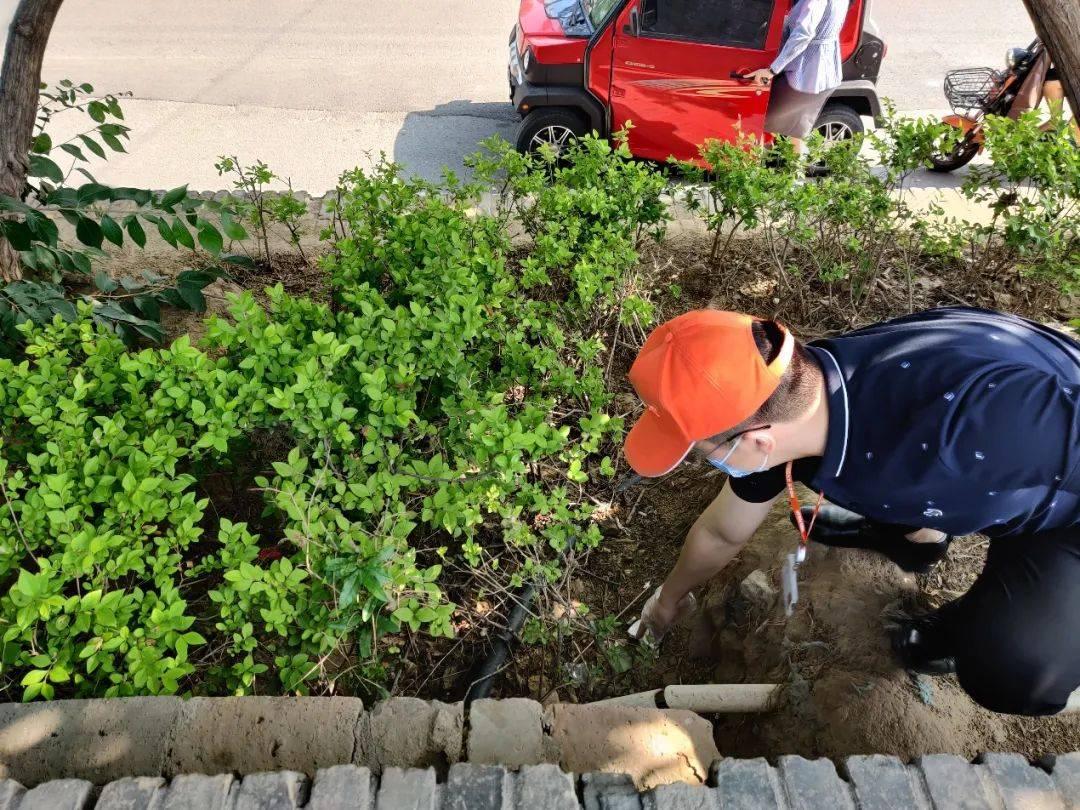 平安普惠衡水分公司开展美丽行动,维护城市环境