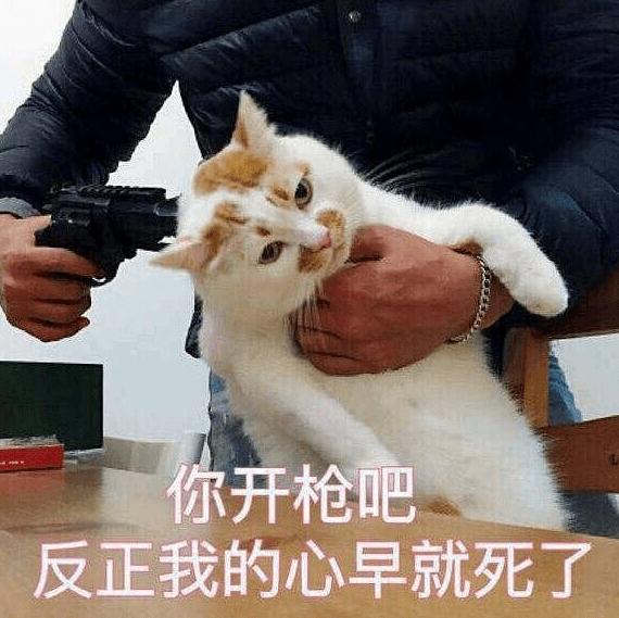 剑网3陈月成药宗宗主(玩家:抱歉我给稻香村拖后腿了)