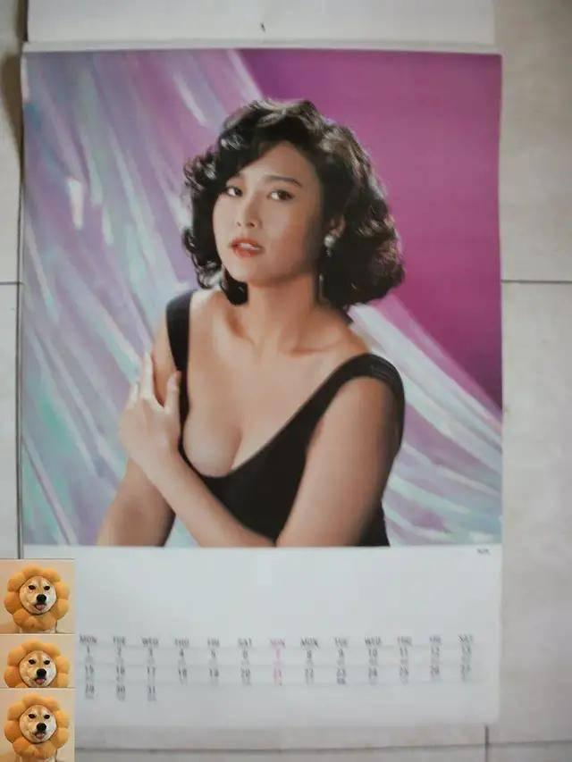 图片[20]-八九十年代的女明星挂历,复古又雷人,都是青春的记忆,好怀念啊-妖次元