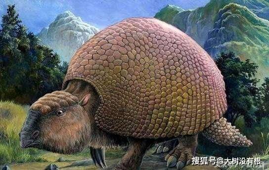 存活了800万年的动物,由于肉质鲜美,最终被人类吃到灭绝